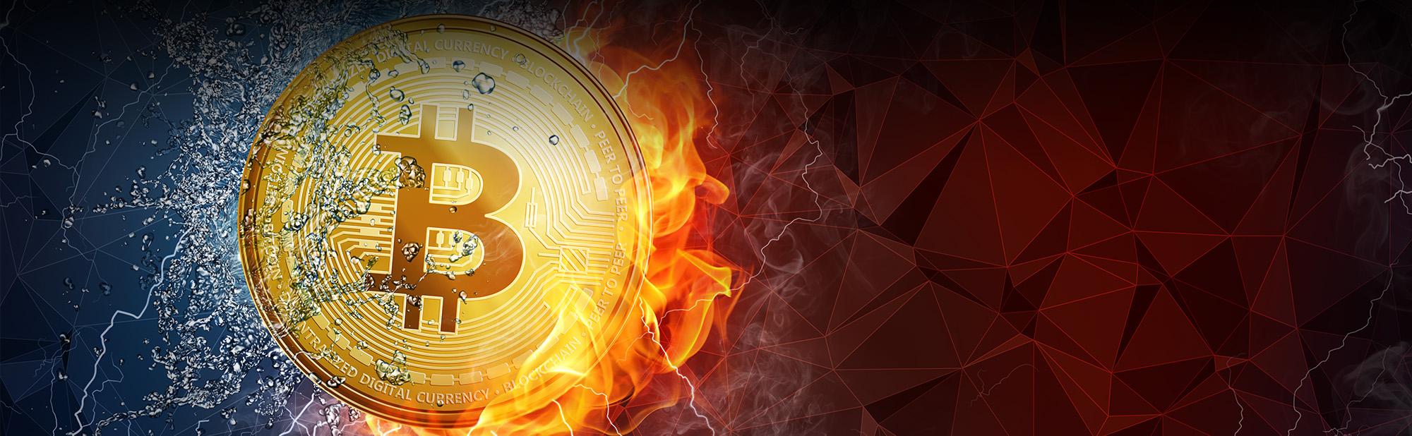 bitcoi_web_banner2 (1)
